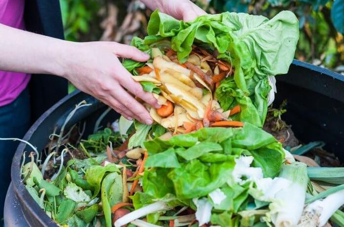 Pengertian sampah organik