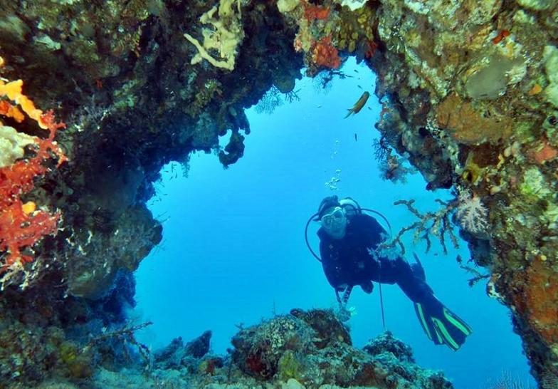 Manfaat terumbu karang dalam ekonomi