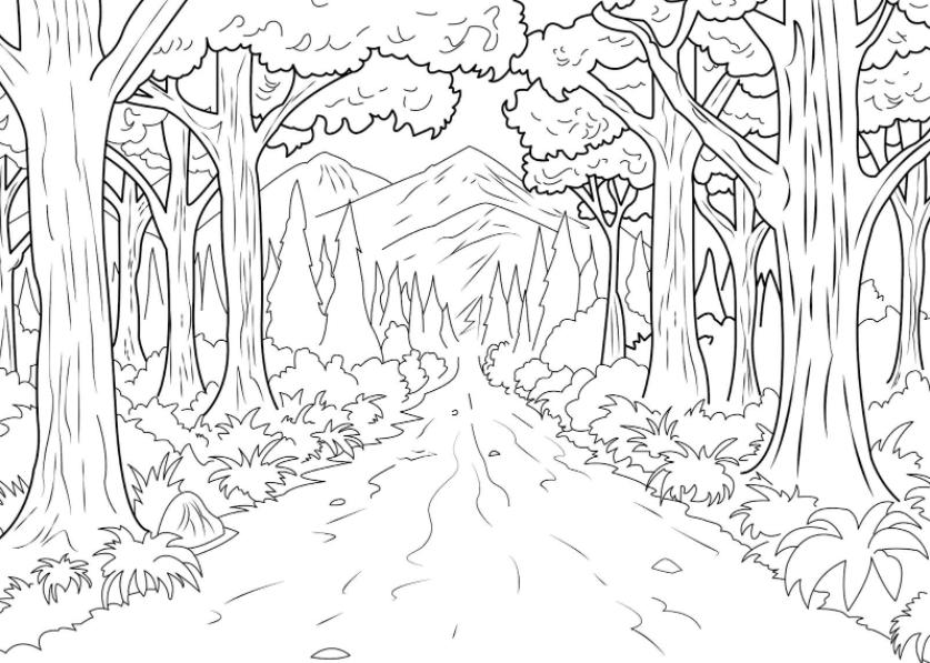 Sketsa Gambar Pemandangan Hutan Simple